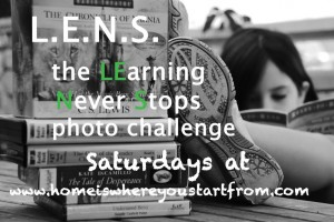 L.E.N.S. Challenge