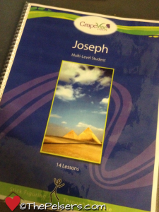 Kids in the Word Wednesday: Joseph from Grapevine Studies