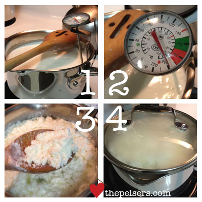 How-to-Make-Ricotta-Steps-1-4