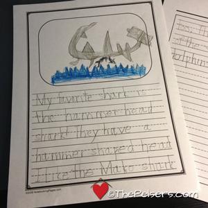 Shark Story Write Shop A