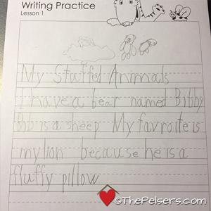 Write Shop A Animals Story