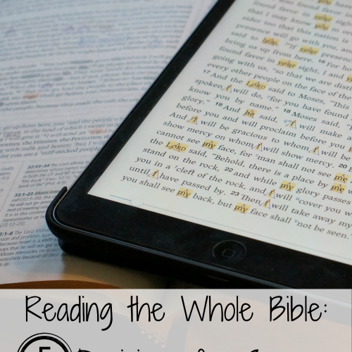 Reading-the-whole-bible-success.jpg