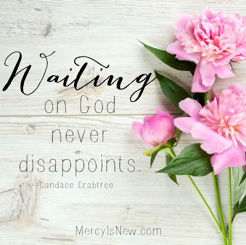 Are you waiting for God? He never disappoints. Read more at thepelsers.com about how to handle the waiting in Wait Only Upon God.
