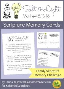 Salt and Light Scripture Memory Cards