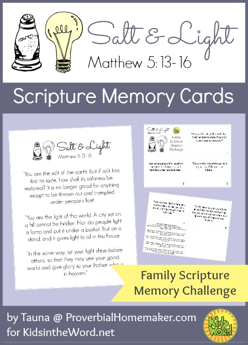 Salt and Light Scripture Memory Cards