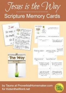 Jesus is the Way scripture memory cards