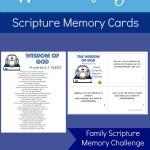 Wisdom of God Scripture Memory Cards