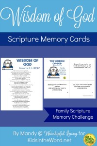 The Wisdom Of God Memory Cards