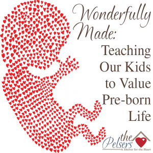 Wonderfully Made: Teaching Our Kids to Value Pre-Born Life