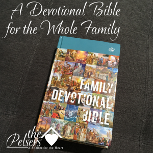 A Devotional Bible for the Whole Family